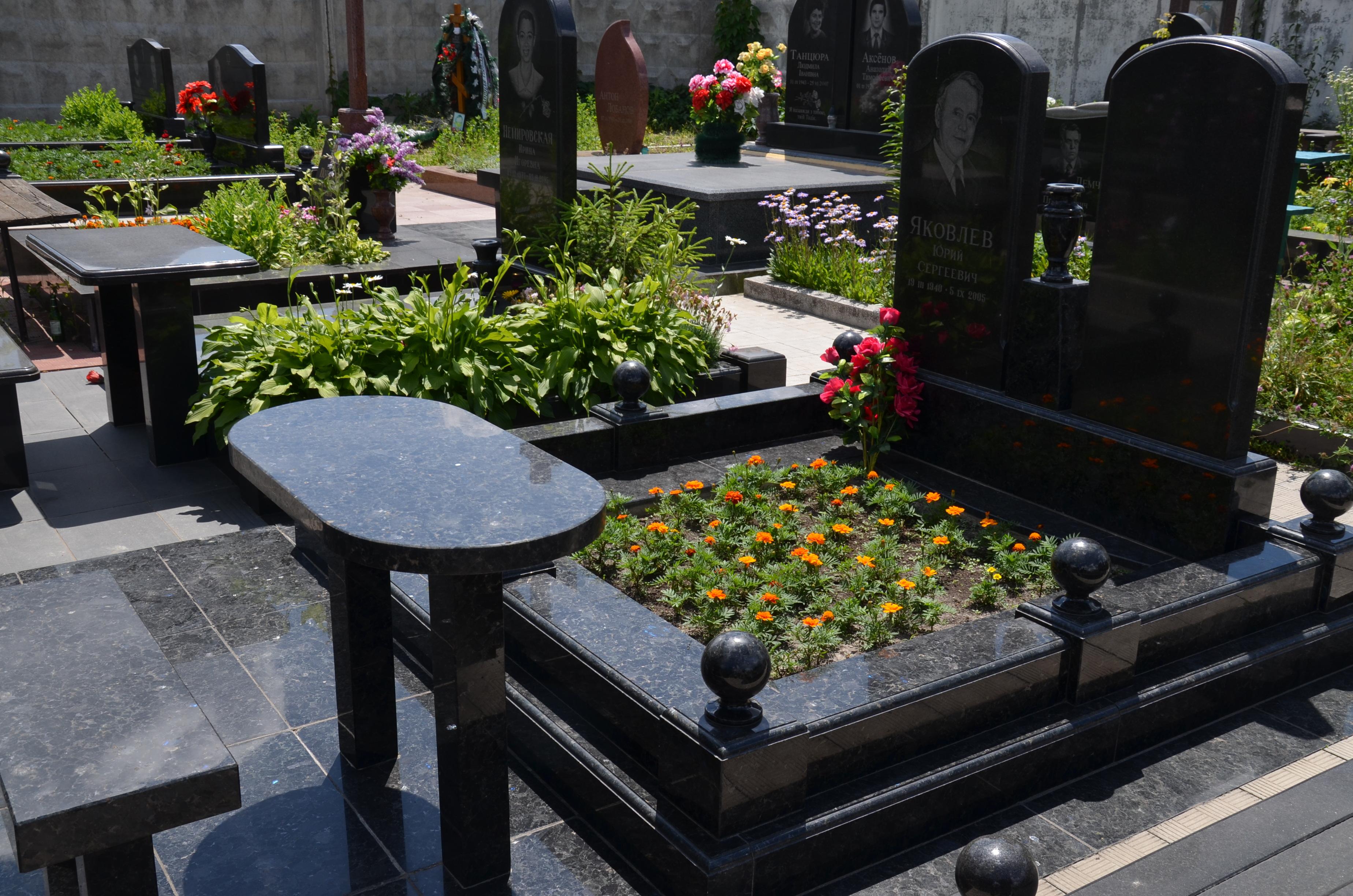 подача фотографии надгробий в узбекистане голубого кота можно